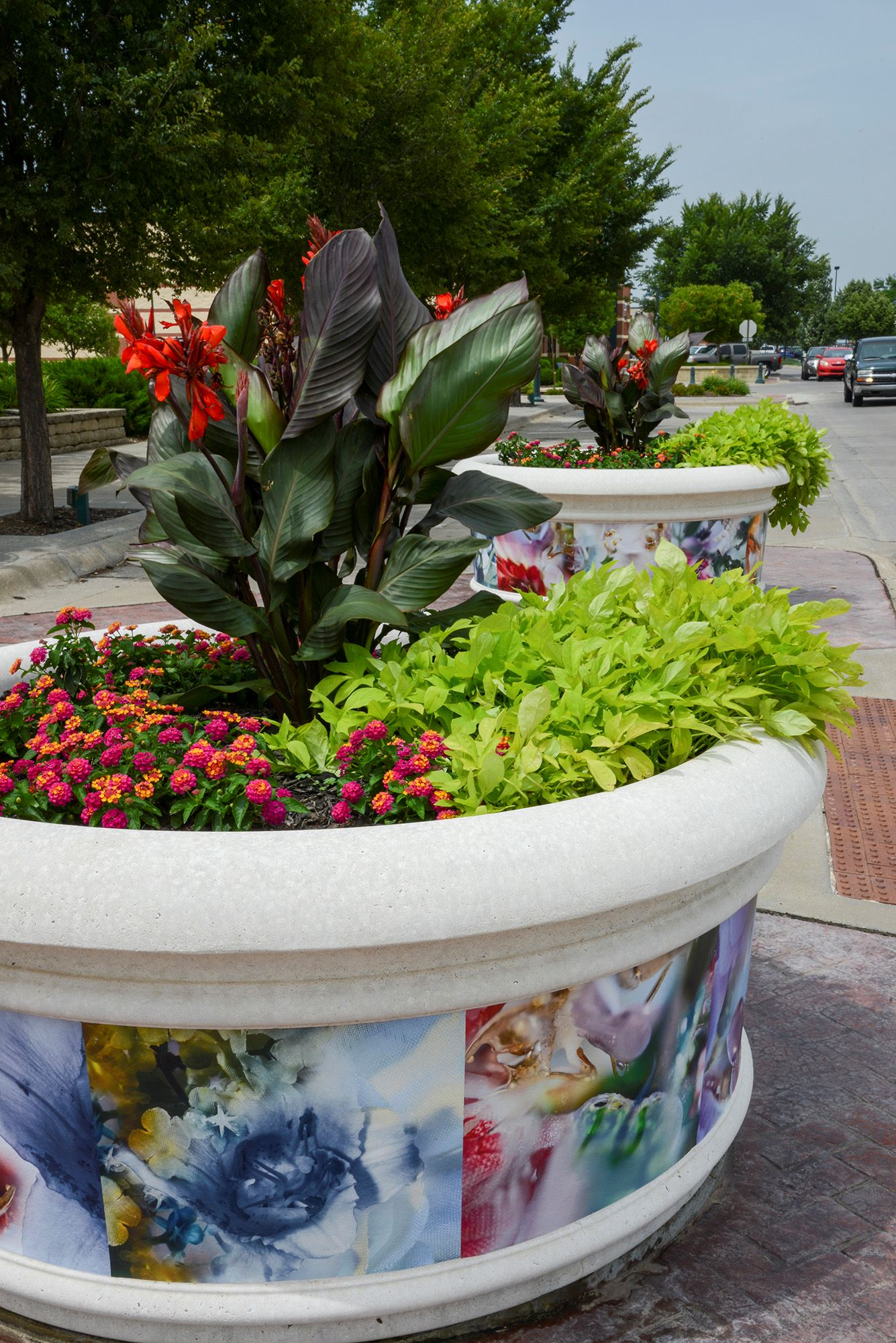 Blooming Planters I